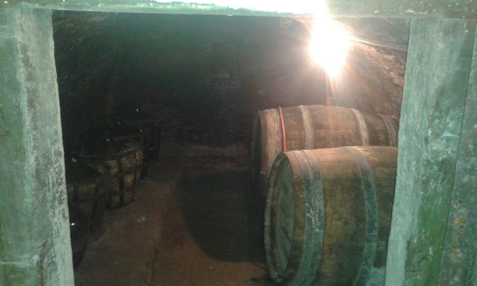 Nová cena = Chatka + vinice, Viničky
